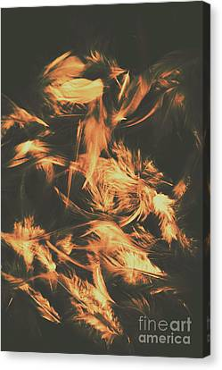 Feathers And Darkness Canvas Print