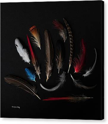 Feathers From The Dark Canvas Print by Randi Grace Nilsberg