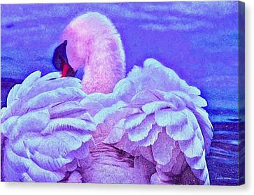 Feathers Of Royalty Canvas Print by Dennis Baswell