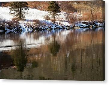 Canvas Print featuring the photograph February Reflections by Karol Livote