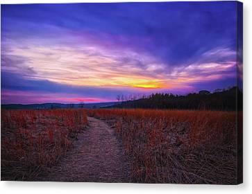 February Sunset And Path At Retzer Nature Center Canvas Print by Jennifer Rondinelli Reilly - Fine Art Photography