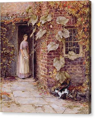 Feeding The Kitten Canvas Print by Helen Allingham