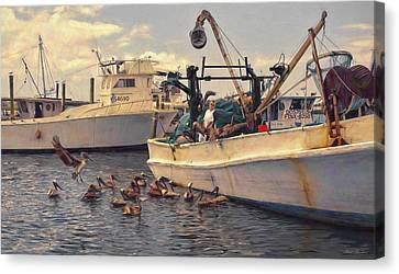 Feeding The Pelicans Canvas Print