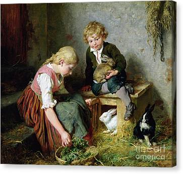 Feeding The Rabbits Canvas Print