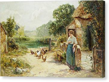 Feeding Time Canvas Print by Ernest Walbourn