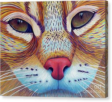 Feel It Canvas Print by Brian Commerford