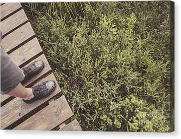 Feet Of A Man Mountaineering On A Rainforest Track Canvas Print by Jorgo Photography - Wall Art Gallery