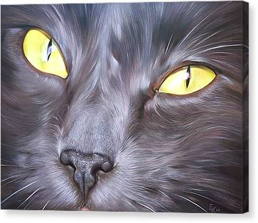 Feline Face 1 Canvas Print by Elena Kolotusha
