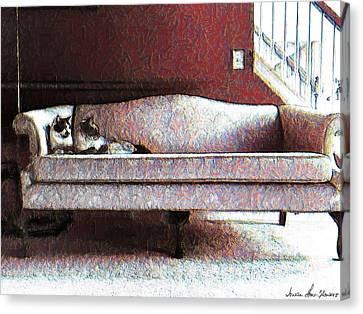 Felines Be Like... Canvas Print by Iowan Stone-Flowers
