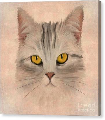 Felis Catus Canvas Print by John Edwards