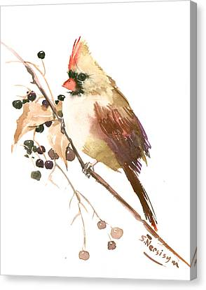 Female Cardinal Bird Canvas Print