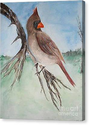 Canvas Print featuring the painting Female Cardinal by Sibby S