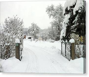 Canvas Print featuring the photograph Fence And  Gate In Winter by Wilhelm Hufnagl