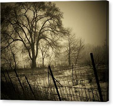 Fence And Tree Canvas Print by Michael L Kimble