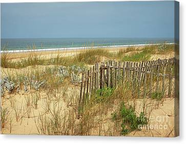 Fence In The Dunes Canvas Print by Carlos Caetano
