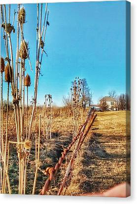 Fence Line Canvas Print by Dustin Soph