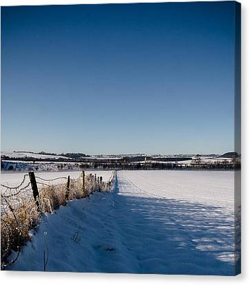 Barbed Wire Fences Canvas Print - Fence by Chris Dale