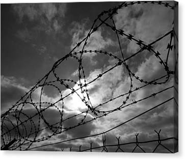 Fence With Barbed Wire In Gray Canvas Print by Miroslav Nemecek