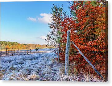 Canvas Print featuring the photograph Fenced Autumn by Dmytro Korol