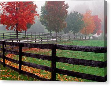 Fenceline And Wet Road, Autumn Color Canvas Print by Panoramic Images