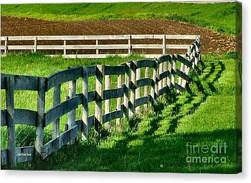 Fences And Shadows Canvas Print by Julie Dant