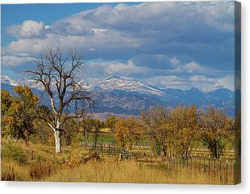 Fences Canvas Print by James BO Insogna