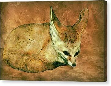 Sudan Red Canvas Print - Fennec Fox by Jack Zulli