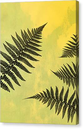 Fern Leaves 2 Canvas Print
