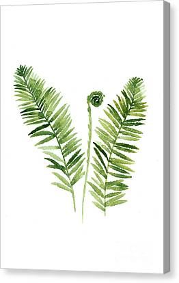 Fern Watercolor Painting Canvas Print by Joanna Szmerdt
