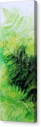 Ferns 1 Canvas Print by Hanne Lore Koehler