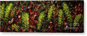 Ferns And Berries Canvas Print