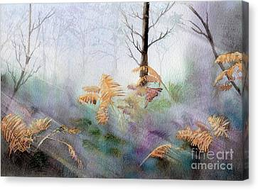 Ferns In The Forest Canvas Print by Kim Hamilton
