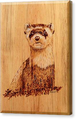 Canvas Print featuring the pyrography Ferret by Ron Haist