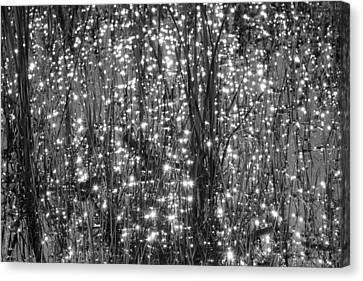 Festival Of Lights Canvas Print