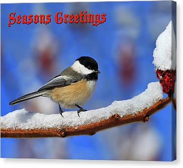 Canvas Print featuring the photograph Festive Chickadee by Tony Beck