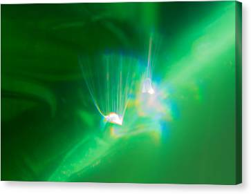 Canvas Print featuring the photograph Fibers by Greg Collins