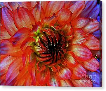 Canvas Print featuring the photograph Fickle by Elfriede Fulda