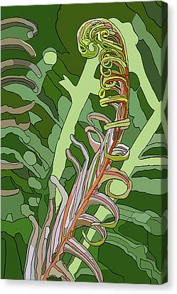 Fiddlehead Canvas Print by Jamie Downs