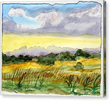 Field And Sky 2 Canvas Print by Warren Thompson
