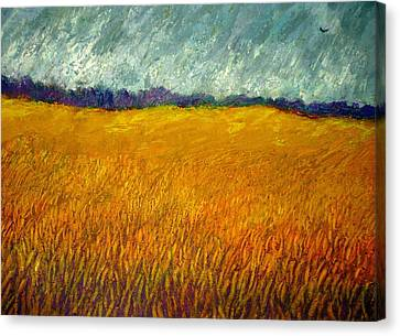 Field At Noon Canvas Print by Kent Whitaker
