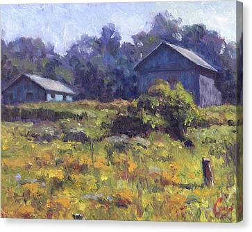Field, Barn, And Shed Canvas Print by Michael Camp