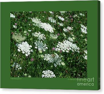 Field Bouquet-iv Canvas Print by Patricia Overmoyer