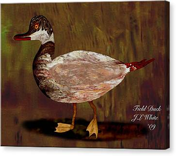 Field Duck Canvas Print by Jerry White