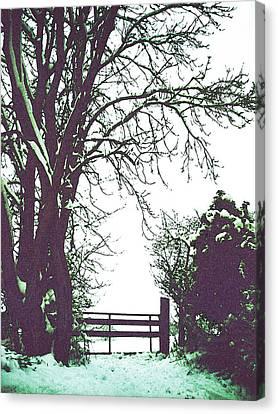 Field Gate Canvas Print by Anne Kotan