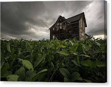 Abandoned Houses Canvas Print - Field Of Beans/dreams by Aaron J Groen