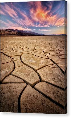 Field Of Cracks Canvas Print by Nicki Frates