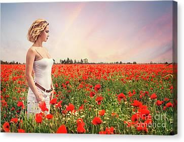 Field Of Dreams Canvas Print by Evelina Kremsdorf