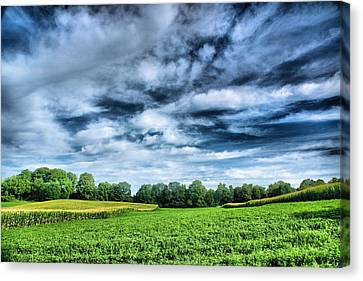 Cornfield Canvas Print - Field Of Dreams One by Steven Ainsworth