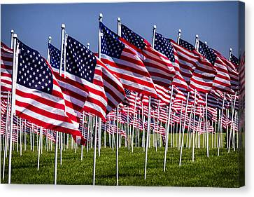 Field Of Flags For Heroes Canvas Print