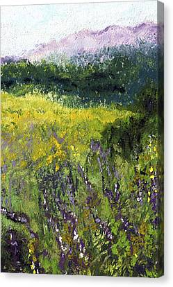 Field Of Flowers Canvas Print by David Patterson